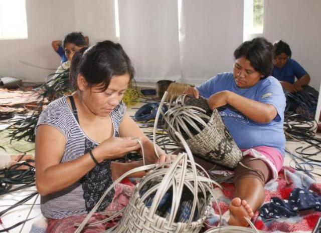 Rede Peteca - Chega de Trabalho Infantil. Trabalho Infantil Indígena