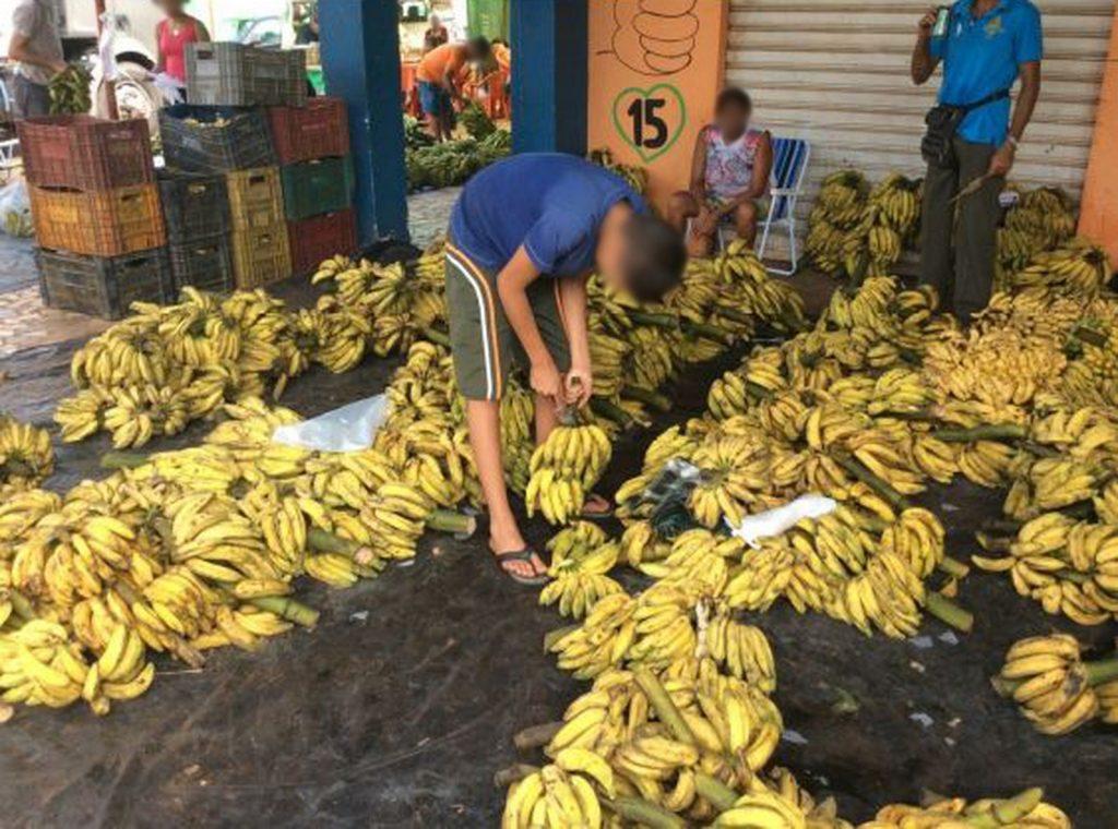 Crianças foram flagradas trabalhando na feira do Produtor, em Boa Vista (RO). Crédito: Ministério do Trabalho/Divulgação
